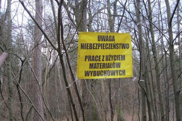 20 tysięcy niewybuchów w Lesie Młochowskim - Grodzisk News