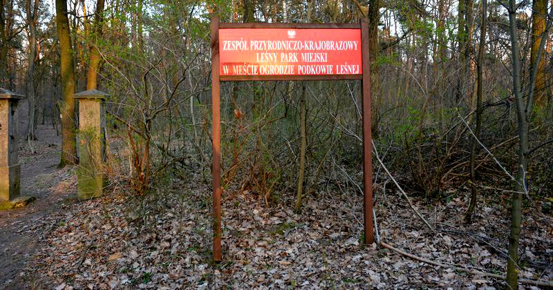 Wielkie sprzątanie podkowiańskiego parku - Grodzisk News