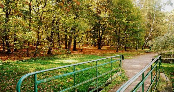 Podkowa: Czas na rewitalizację Parku Miejskiego - Grodzisk News