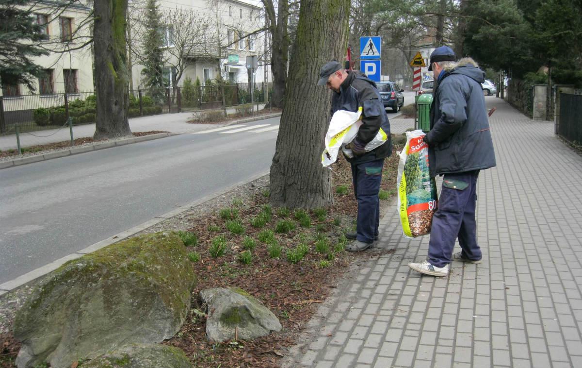 Wiosenne porządki w Podkowie - Grodzisk News