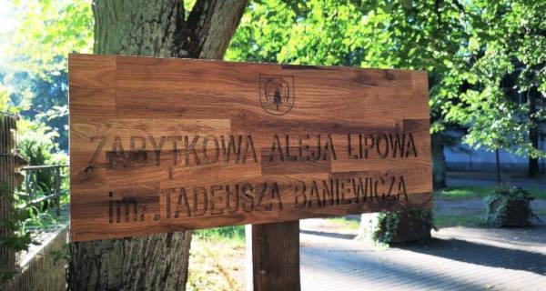 Rewitalizacji Alei Lipowej nie będzie, ale tabliczki się pojawiły - Grodzisk News