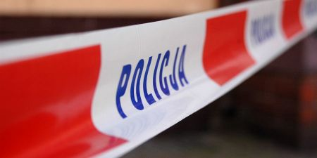 Ciało kobiety znalezione na drzewie - Grodzisk News