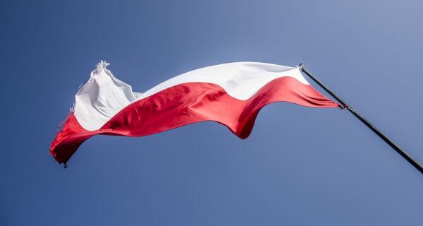 Skromne obchody Święta Niepodległości - Grodzisk News