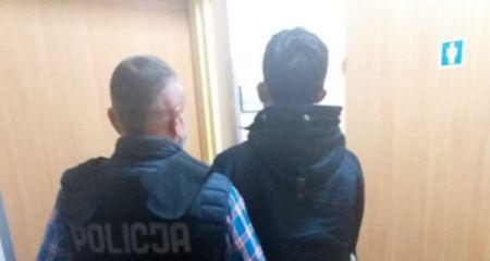 26-letni Słowak zatrzymany za kradzież samochodu i nie tylko - Grodzisk News
