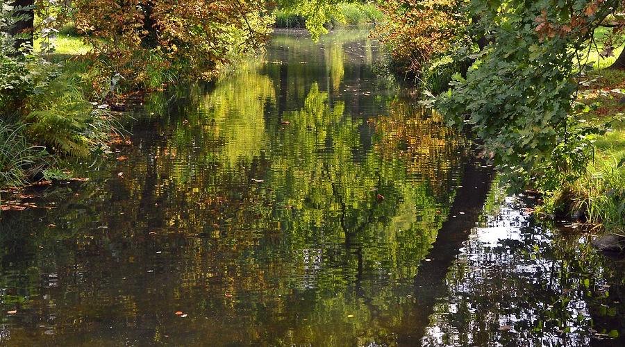 Grodzisk ureguluje stan rzeki Mrowny - Grodzisk News