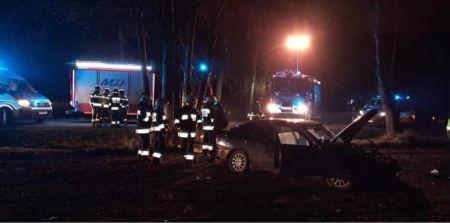 Samochód uderzył w drzewo. Dwie osoby w szpitalu - Grodzisk News