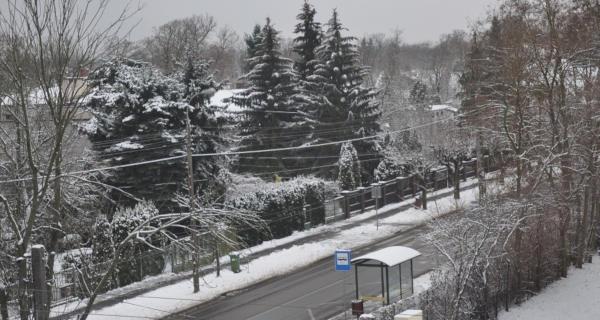 Zima drogowców w Grodzisku i Brwinowie nie zaskoczyła? - Grodzisk News