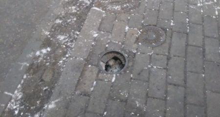 Dziura w chodniku na Radońskiej. Studzienka czeka na naprawę - Grodzisk News
