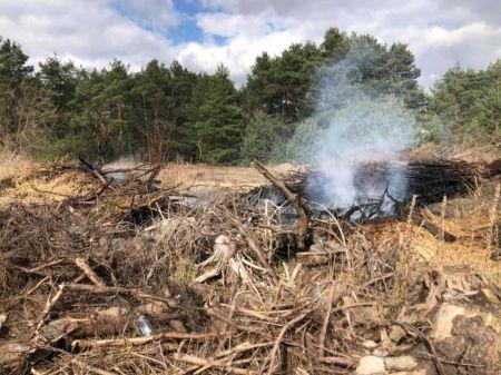 Popołudniowy pożar w Międzyborowie [FOTO] - Grodzisk News