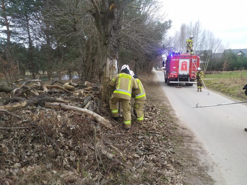 Wiatr łamie drzewa. Strażacy mają sporo pracy - Grodzisk News