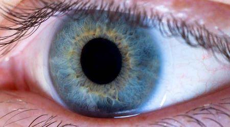Co trzeba wiedzieć o wadach wzroku? Krótkowzroczność i dalekowzroczność - Grodzisk News