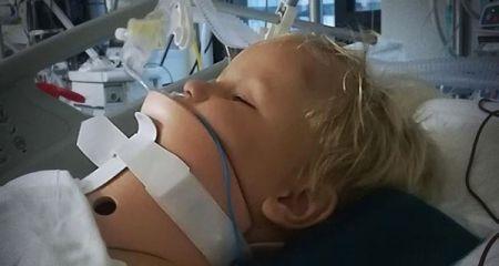 Mały Marcel ledwie uszedł z życiem. Potrzebuje naszej pomocy - Grodzisk News