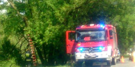 Burza nad powiatem. Połamane drzewa, zalane posesje i uszkodzony dach - Grodzisk News