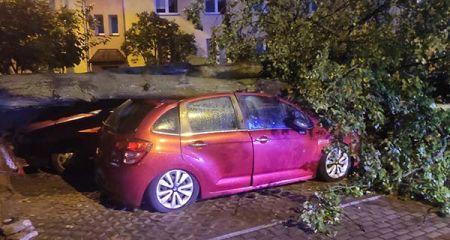 Grodziscy strażacy kontra skutki nawałnicy w Płocku. Zobacz zdjęcia - Grodzisk News