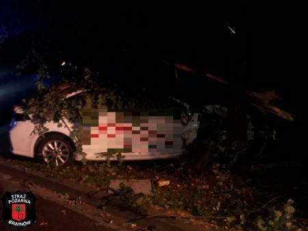 Brwinów. Kierowca uderzył w drzewo, poszukuje go policja [FOTO] - Grodzisk News