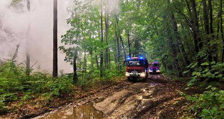 Ćwiczenia grodziskich strażaków w Skułach. Zobacz zdjęcia - Grodzisk News