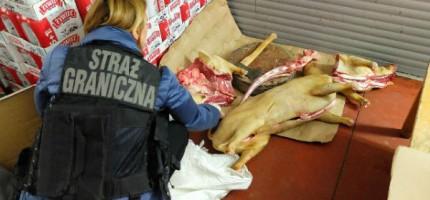 Tona nielegalnego mięsa w Wólce Kosowskiej