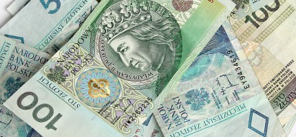 Ogólnopolski grant dla Książenic