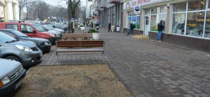 Nasadzą nowe drzewa w centrum miasta, wytną chore