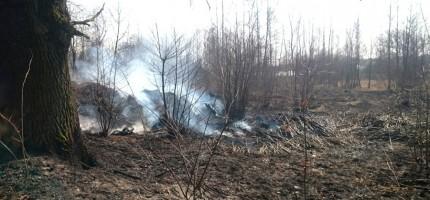 Rozpoczęło się wypalanie traw. Są pierwsze pożary