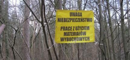 20 tysięcy niewybuchów w Lesie Młochowskim