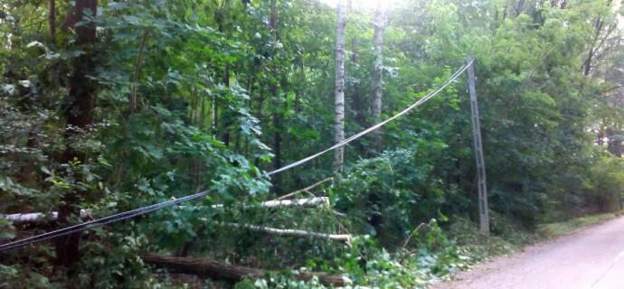 Wichura w gminie: powalone drzewa, zerwane linie