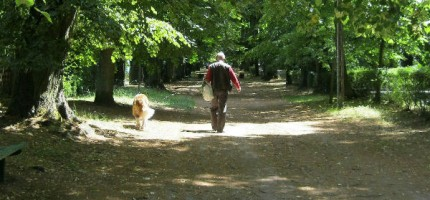 Trudna walka z psim kłopotem