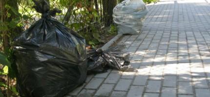 Odpadowy problem Milanówka. W mieście zalegają worki z liśćmi