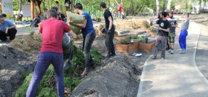Mieszkańcy wspólnie reaktywują ogród miejski