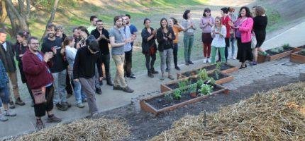 Pomóż reaktywować Społeczny Ogród Miejski – zagłosuj!