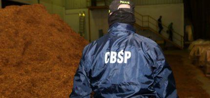 Nielegalna fabryka papierosów w Kostowcu