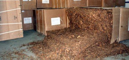 Magazyny nielegalnego tytoniu w Grodzisku i Jankach [FOTO i VIDEO]