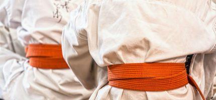Bezpłatne treningi sportów walki dla grodziszczan dużych i małych