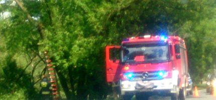 Pracowity dzień strażaków. Blisko 50 interwencji