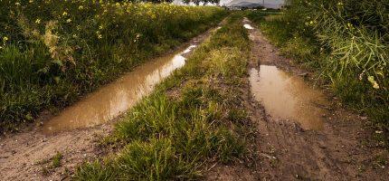 Dotacje na modernizację dróg wiejskich