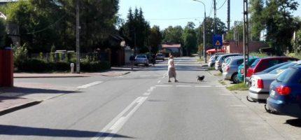 """Kiedy """"zebra"""" na skrzyżowaniu Garbarskiej z Bałtycką?"""
