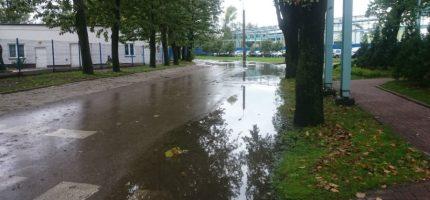 Problem z deszczówką na ul. Świeżej czeka na rozwiązanie [WIDEO]
