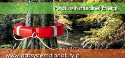 Kilkadziesiąt tysięcy złotych na dobre pomysły ekologiczne. Zawalcz o grant!