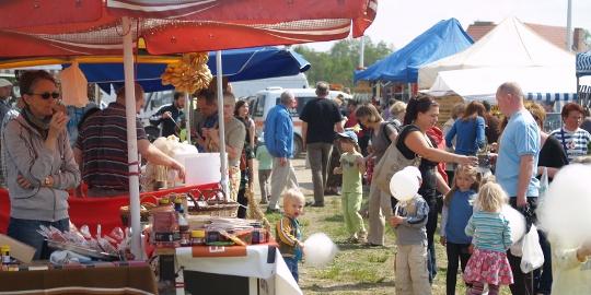 Piknik ekologiczny w Książenicach już po raz siódmy