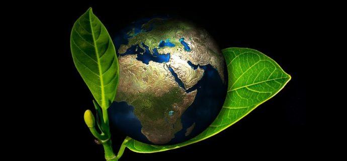 Dziś Światowy Dzień Ziemi. Atrakcje? Za tydzień