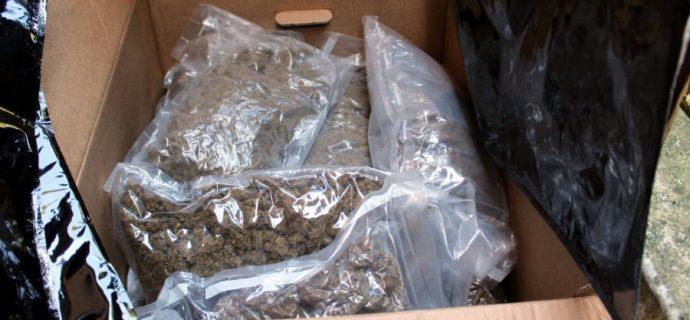 Policjanci zarekwirowali narkotyki za ponad milion złotych