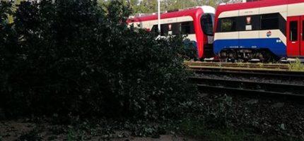 Drzewo uszkodziło sieć trakcyjną. Duże utrudnienia na WKD
