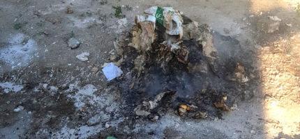 Mandaty za palenie odpadów