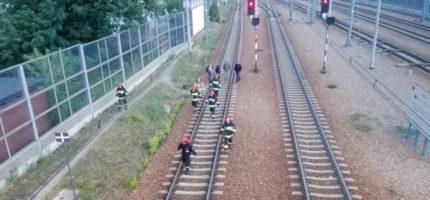 Mężczyzna rzucił się pod pociąg