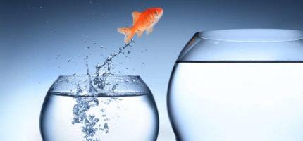 5 sygnałów, które wskazują, że marnujesz swój potencjał w aktualnej pracy