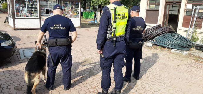Liczniejsze kontrole w rejonie stacji PKP w Milanówku. Ukrócą przechodzenie przez tory?