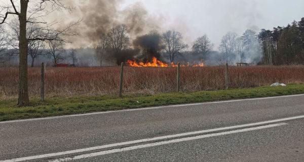 Pożary traw w Otrębusach i Kałęczynie [FOTO]