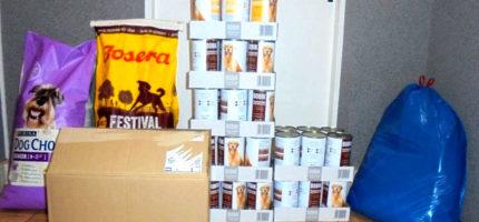 """""""Paka dla psiaka"""": 240 kg karmy dla podopiecznych schroniska"""