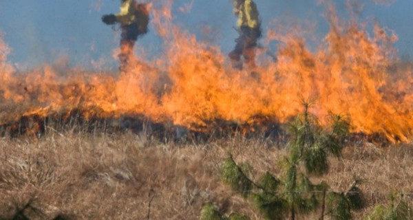 Wypalania traw ciąg dalszy. Kolejne pożary w powiecie [AKTUALIZACJA]