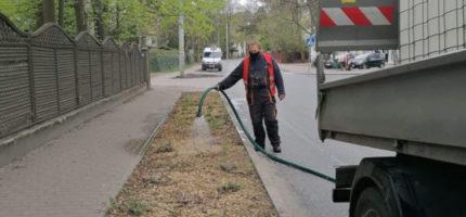 Kontrowersyjne podlewanie roślin w Milanówku?